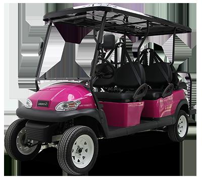 voiturette électrique TRANSPORT S4+2